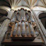 organy-katedra
