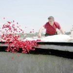 Panteon w Rzymie - płatki róż na Zesłanie Ducha Świętego